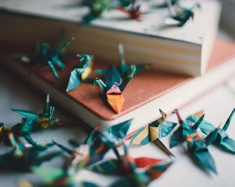 25 - Handmade Origami Paper Cranes in Rifle Paper Co. Terracotta Floral Print