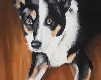 A3 pet portrait in pastel