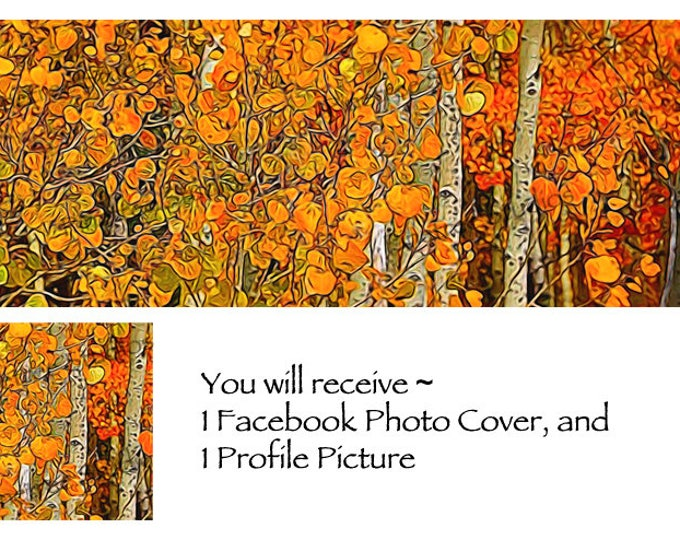 Autumn Aspen ~ Facebook Blank Cover Photo and Profile Picture