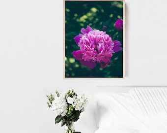 Pink peony photography, Pink home decor, rustic home decor, Bedroom art, Flower wall art, Nature photography, Floral photography, Home decor