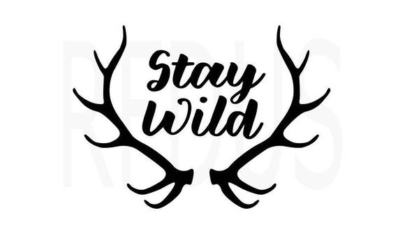 Stay Wild SVG FILE Baby boy svg cricut and cameo cutting
