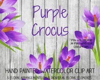 Instant Download - Hand Painted Watercolor Purple Crocus Flowers Floral Arrangements Clip Art Set - Item# 105 Purple Crocus