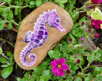 Painted Stone / Seahorse Painting / Garden Decor / Rock Art / Hand Painted Natural British Stone
