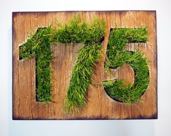 Address Sign | Rustic Address Plaque | Distressed wood plaque with Artificial Grass numbers | Custom House numbers, House address sign