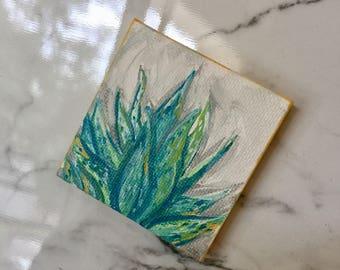 Magnetic little succulent
