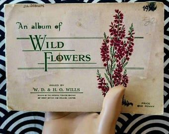 W.D. & H.O. Willis An album of wild flowers full collection of cigarettes labels 1936 UK