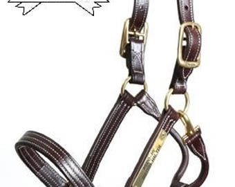 Leather Halter with Custom Brass Nameplate