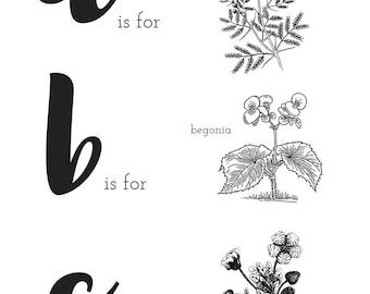 "11""x14"" ABC Botanical/Plant Digital Printout"
