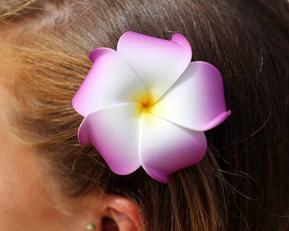 Hawaiian flower hair image collections flower wallpaper hd flower hair clip purple plumeria hawaiian flowers beach zoom izmirmasajfo image collections izmirmasajfo Image collections