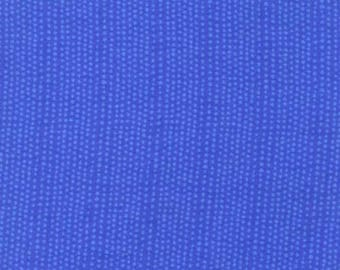 End of Bolt Deal! 1 1/3 YARDS of Blank Quilting Chalk Talk Blue Circles - BTR 6798