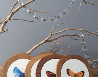VINTAGE HOME...6 butterfly coasters teak wood back - bar boho chic cottage biology animal insect entertain holiday-dining room gift drink