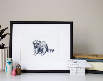 Raccoon - unframed print