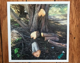 Heart tree stump (17)