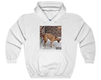 Bear Dump Hooded Sweatshirt