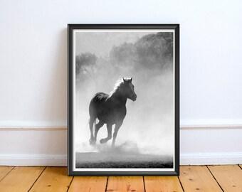 Black and White Wild Horse,Art,Photo,Digital,Download,Decor,Home,Office,Tropical,Dusk,Dust,Coast,Coastal