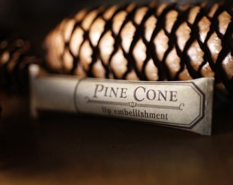 Clearance- Pine Cone lip balm - natural lip balm with beeswax, cocoa butter, forest-inspired natural flavor in eco-friendly tube