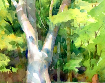 The Old Maple Tree - Original Watercolor in a Gilded Frame