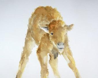 Baby Bison watercolor painting Nursery buffalo art Spring Babies