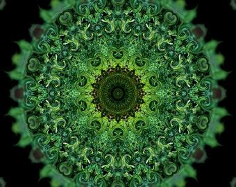 Garden Goddess Summer Herbal Mandala Print 5x7 Seasonal Celtic Solstice