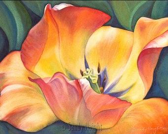 Original Framed Watercolor, Sunshine Dance, floral, tulip, macro view, garden, botanical, spring, wall art, home decor, yellow, orange, gift