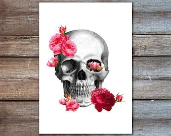 Totenkopf mit Rosen - Schädel Kunst - Anatomie