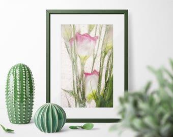 Colorful Large Botanical Fine Art Print WaterColor Paper Original Art Limited Edition.  Unique Colorful Floral  Fine Art Photography Decor