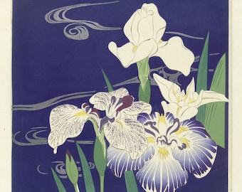 Irises - copy of colour woodblock print by Tsukioka Kogyo.
