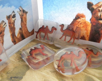 Camel soap / Camel party favors