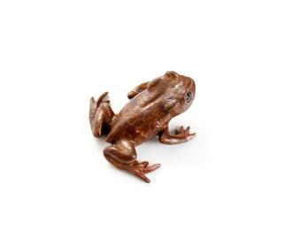 Bronze Toadlet, mottled brown patination
