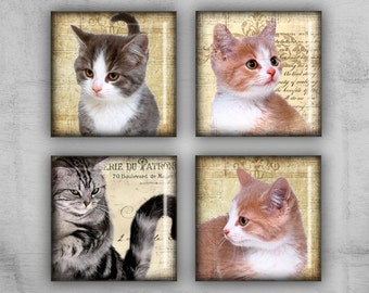 1x1 inch Necklaces - Digital Collage Sheet - Printable Art for jewelry pendants or scrapbooking - instant download -  KITTIES