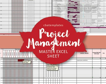 Master PROJECT MANAGEMENT Excel Template - instant download