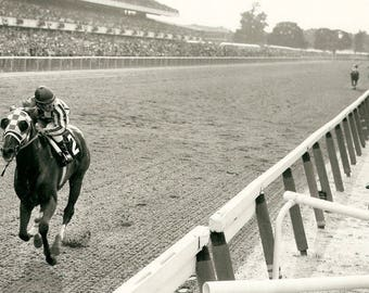 Iconic Secretariat Ron Turcotte 1973 Belmont 16x20 12x18 or 8x12  Photo Triple Crown Win Voted  Greatest Horse Racing Photo of All Time