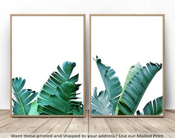 Tropical Print, Tropical Decor, Banana Leaf, Nature Photography, Plant Print, Banana Tree, Leaf Art, Minimalist Print, Downloadable Wall Art