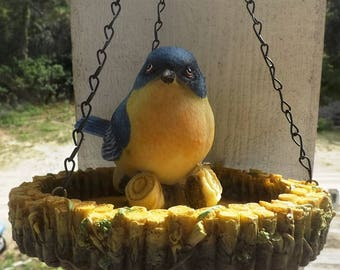 Bird Feeder, Bluebird Feeder