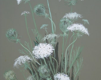 Queen Anne's Lace - Limited Edition Fine Art Print