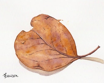 Golden gum leaf ~ Original watercolour painting