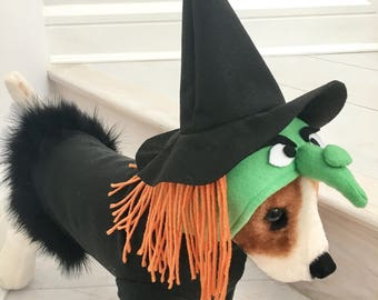 Witch costume by FiercePetFashion