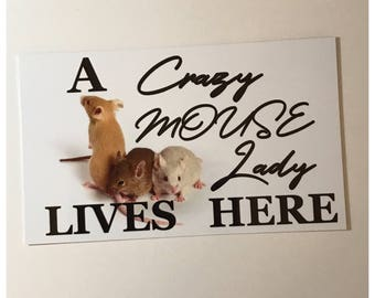 A Crazy Mouse Mice Lady Lives Here Sign Home Pet Pets