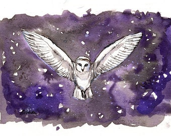 Barn owl, wildlife, nature, bird of prey, original ink on paper