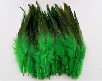 set of 50 mixed green feathers 10-15cm