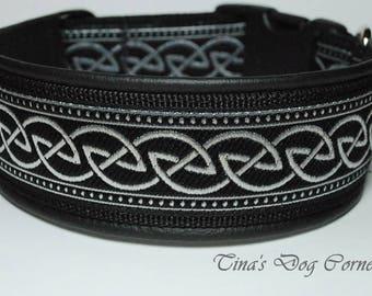 2 inches celtic dog collar, black/silver