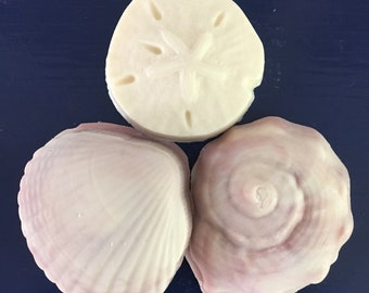 Sea Shell Collection Scented with Oud Wood, Soft Woodsy Scent, Beautiful Russet Swirls, Available in Clam Shell, Conch Shell, and Starfish