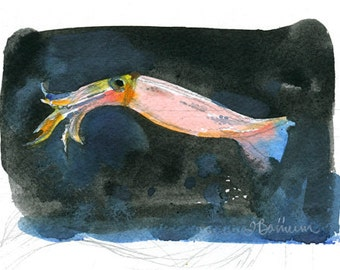 Lesser Flying Squid, Cephalopod series- illustration print in multiple sizes