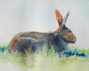 Cottontail Rabbit print from my original water color painting