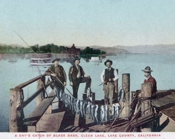 Clear Lake, California - Fishermen Showing the Day's Catch (Art Prints available in multiple sizes)
