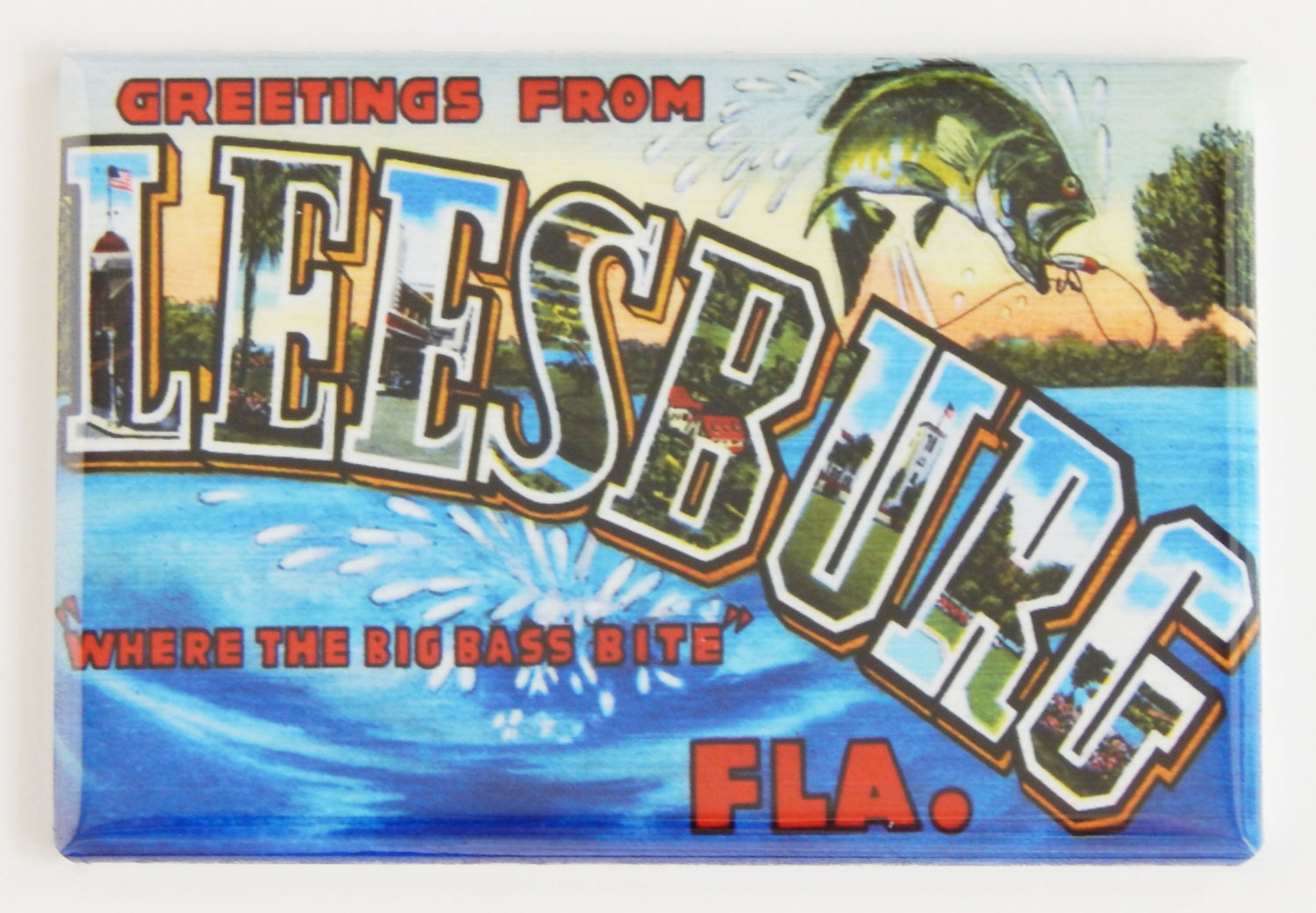 Greetings from leesburg florida fridge magnet request a custom order and have something made just for you kristyandbryce Image collections