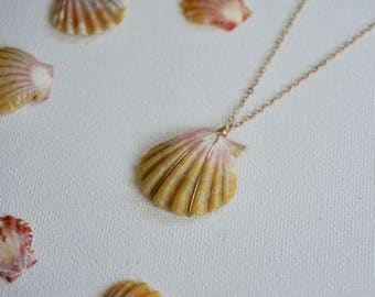 Gold filled sunrise shell necklace