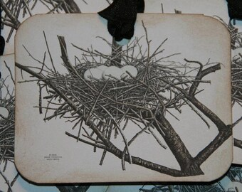 Vintage Bird Nest Tags
