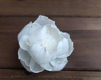 "One Dozen 2-2.5"" Sola Wood Peony Flowers with Pollen"