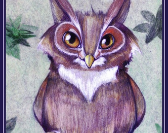 Night Owl - 8x10 Print